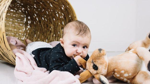 Quel tissu pour la peluche bébé ?