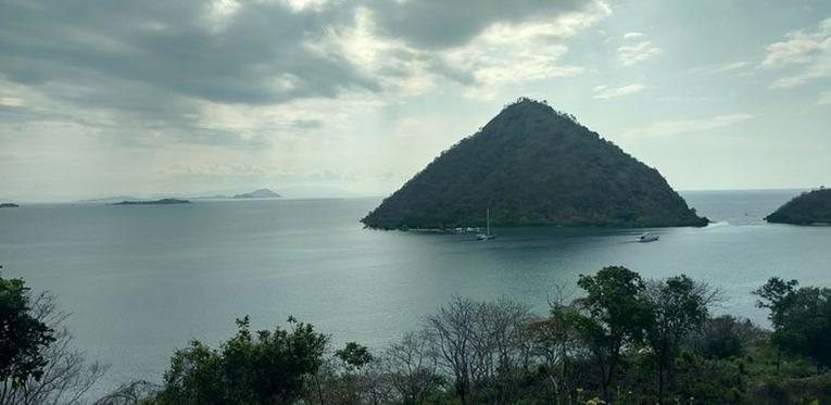 Les pygmées modernes de l'île de Flores n'ont aucun lien génétique avec les hobbits